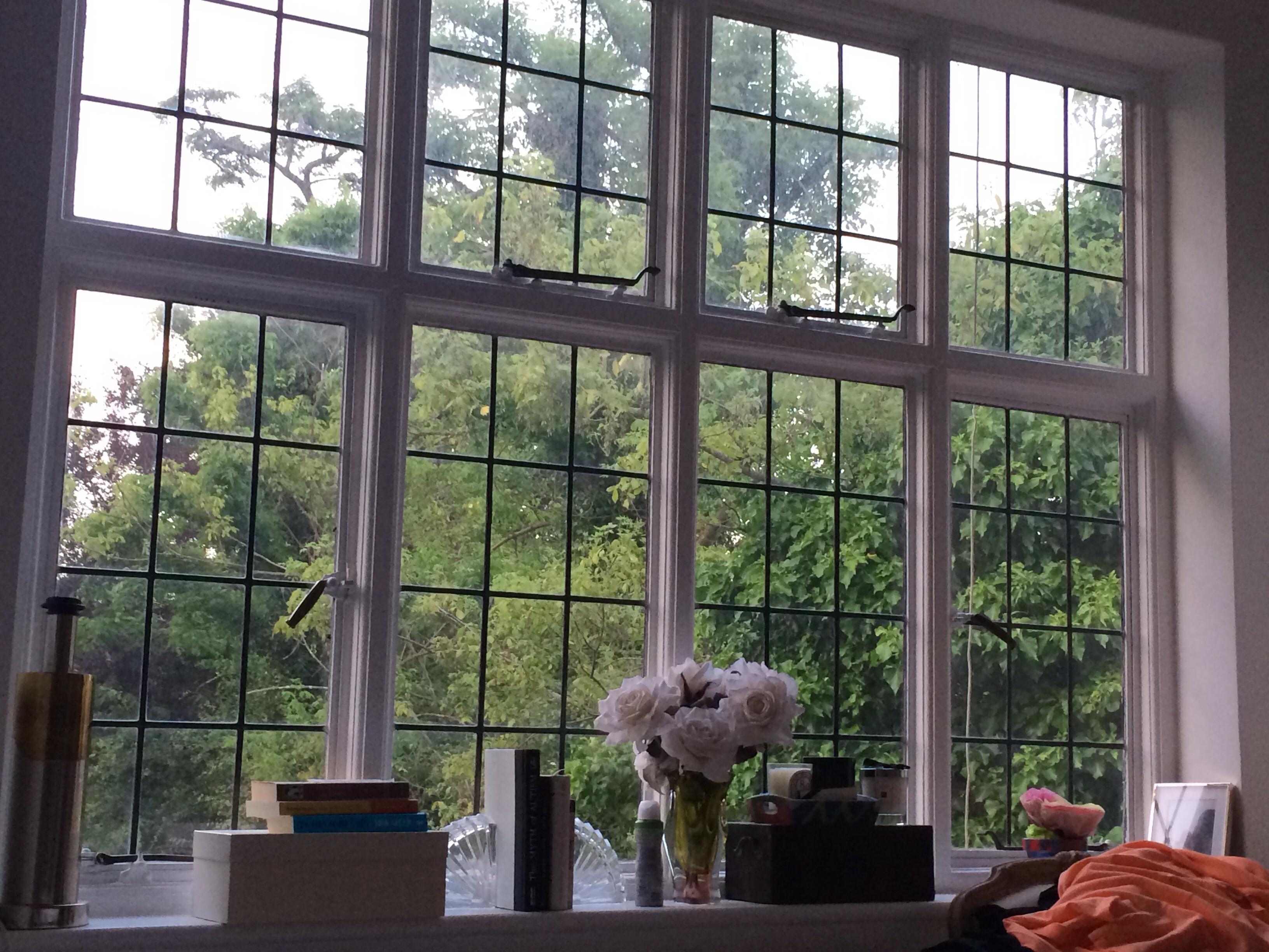 Curtainless windows | unitedinsite